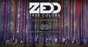 ZEDD True Colors Dokumentation
